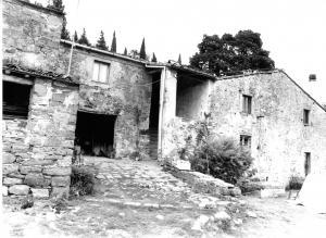 1960, podere Pergoleto